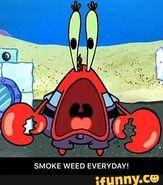Mr. Krabs smoke weed everyday meme