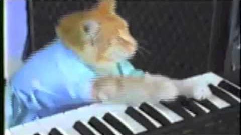 Nyan Keyboard Cat (Original)