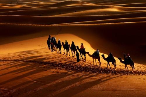 File:Caravan-in-the-Desert-010.jpg