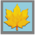 Gold Oakleaf Medal