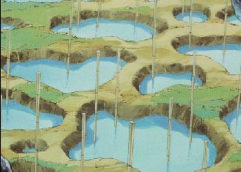 Jusenkyo anime