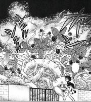 Furinkan High Poison garden