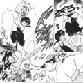 Big Phoenix attack - manga.png