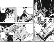 Yohyo protects Ranma
