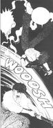 Ranma Flip