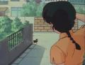 Ranma sees Black Piglet.png