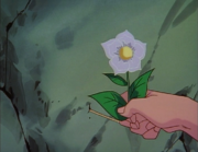 Kuno picks flower - Teenage Ghost Story
