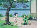 Ranma falls from Tree.png