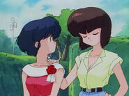 Akane-and-Nabiki-the-girls-of-ranma-1-2-38494414-300-224
