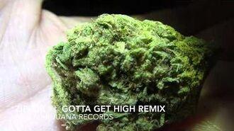 Ziplok - I Gotta Get High Remix - -Official Music Video-