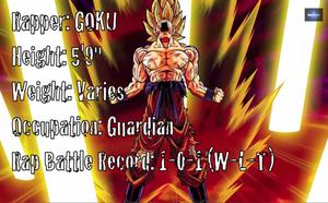 Gokuerboch3