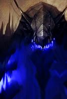 Cerberus Evo 3 art card