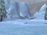 Frozen Coast