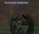Hawkman Ambusher