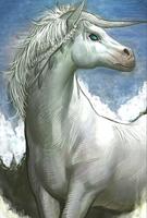 Unicorn Evo 2 art card