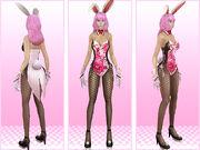22072014 101352 asf-deco-bunny2 368322