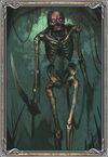 Skeleton Evo1