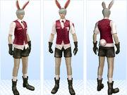 22072014 101508 asm-deco-bunny2 369083