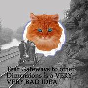 TearRR2cat