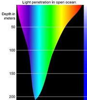 Spectrumx