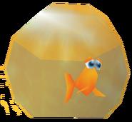 RoystenBKfishbowl