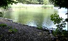 Lake Genius