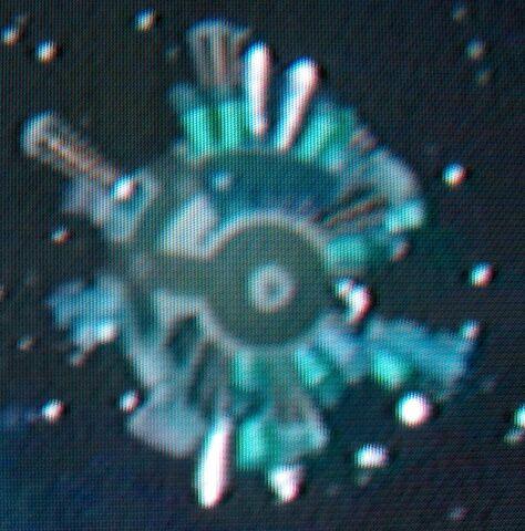 File:Orbita Damosel.jpg