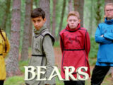 Series 11 Bear Heat