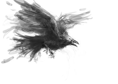 Sketch undead raven by michifromkmk-d5n804p