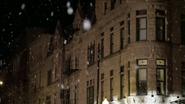 Hauser Snow 2