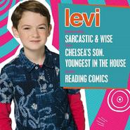 Levi UK Card