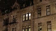 Hauser Snow