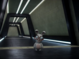 Rabbid Elite