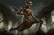 Ur247 kraulwarrior