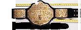 WWE World Heavyweight Championship Icon