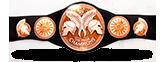WWE Tag Team Championship Icon