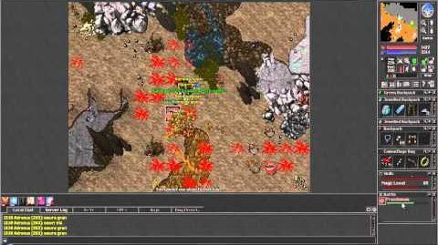 Tibia (The Life of Adronus 78b) - Winter Update 2013-2014 - Roshamuul Questing Basics!