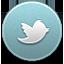 Twitter icon active