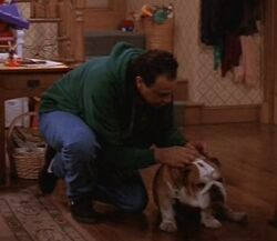 Thedog screenshot