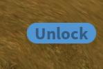 Lock-Unlock Button