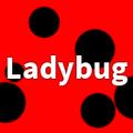 FTLadybug