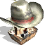 Western Hats RCT3 Icon