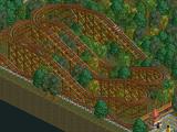 Reverser Roller Coaster