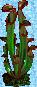 Swamp Plant 3