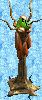 Alien Tree 1