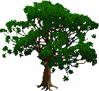 Jungle Tree 1
