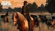 300px-Marston.cattle.suit