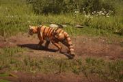 Tigre de tocbuntu