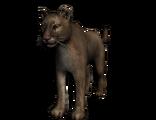 Demi el Puma