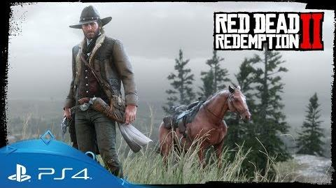 Red Dead Redemption 2 PlayStation 4 Early Access Content PS4